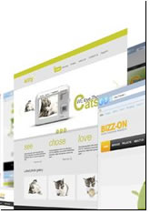 Website Sub Contract Hornsby Sydney
